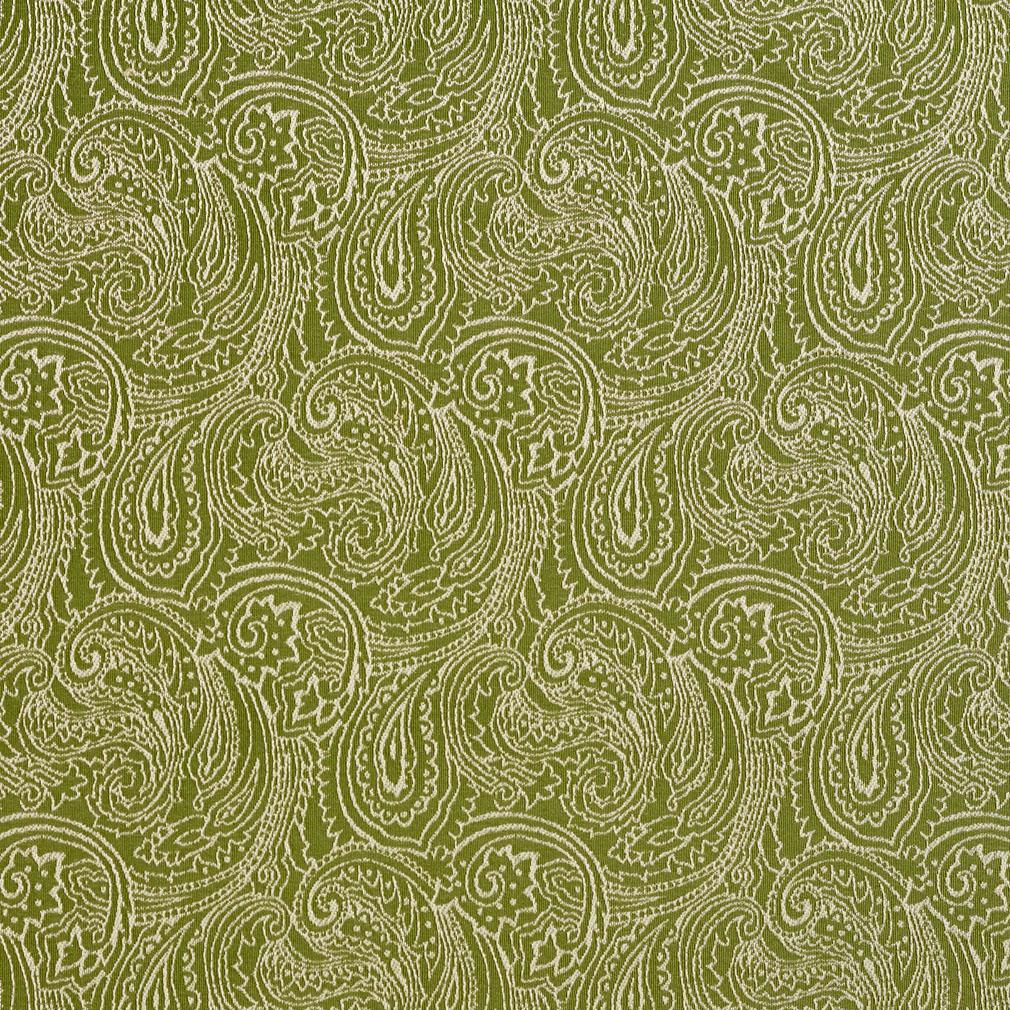Fern Green And White Abstract Decorative Paisley Pattern