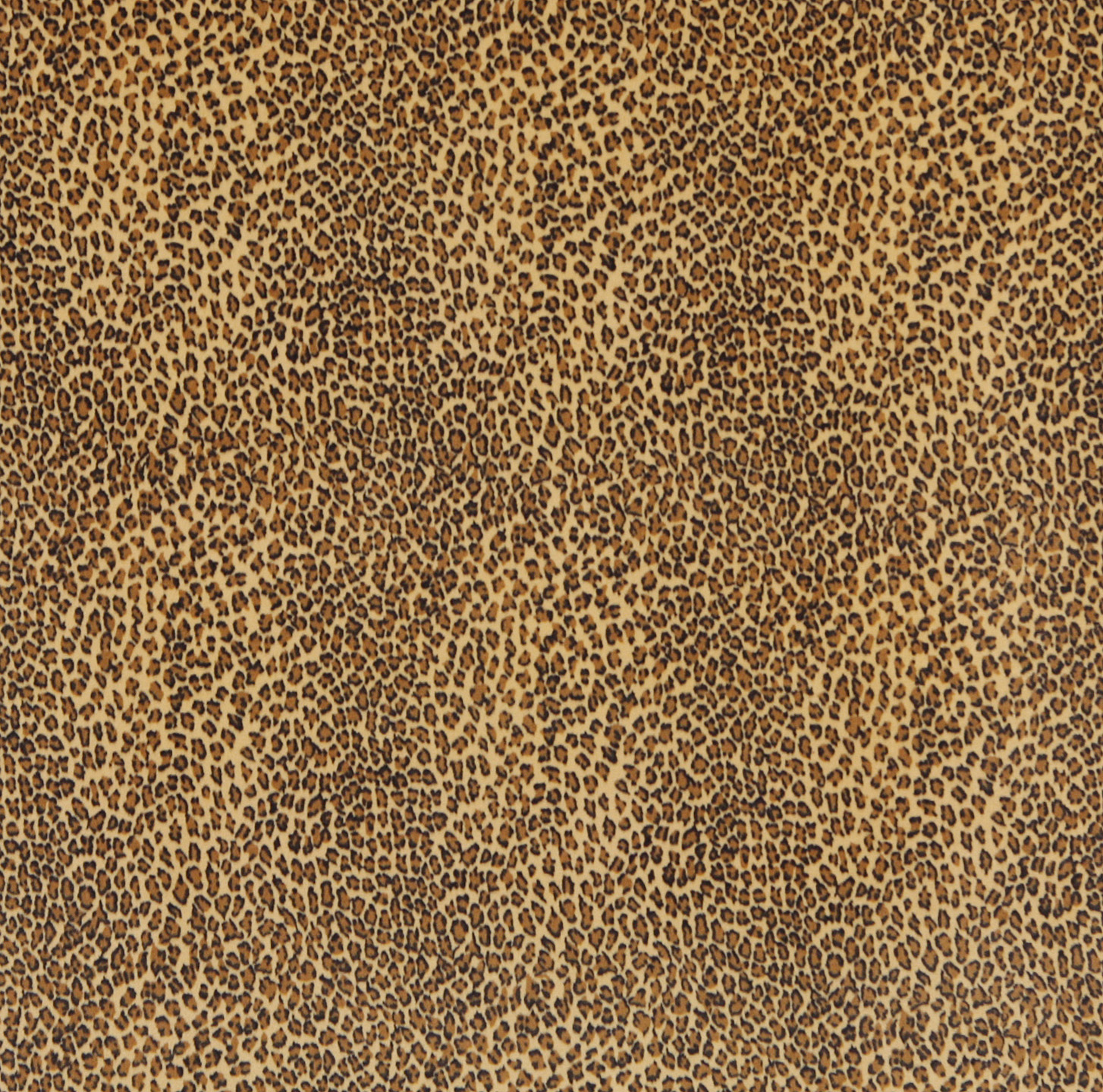 Nugget Black And Gold Leopard Faux Animal Print Microfiber
